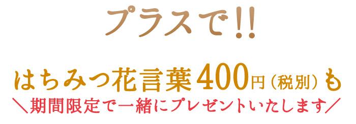 プラスで!! はちみつ花言葉400円(税別)も期間限定で一緒にプレゼントいたします。